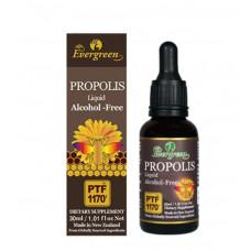 Evergreen Propolis Liquid Alcohol Free PTF1170 30ml
