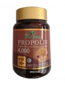 Evergreen Propolis Extract & Vitamin & Lecithin 4000 PTF30+ 360 Capsules